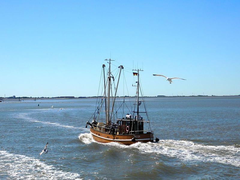 Fischkutter in der Nordsee bei ruhiger See