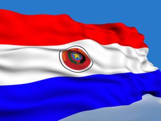Paraguayan flag / Flagge von Paraguay